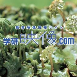 学研映像.com